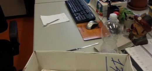 consegna firme sisma 12