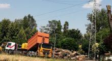 Tra Mirandola e Medolla addio all'ombra sulla ciclabile a Camurana, tagliati gli alberi