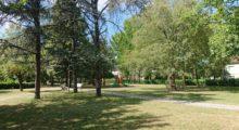 """Cavezzo, """"Libri in giardino"""", letture al fresco dei parchi"""