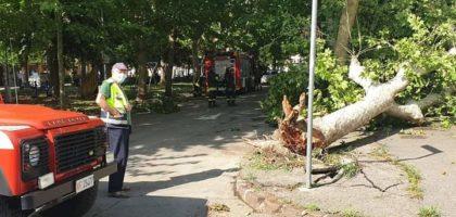 Ecco i danni del temporale a Bomporto