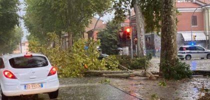 Carpi, la violenza di grandine e temporale abbatte alberi e allaga strade