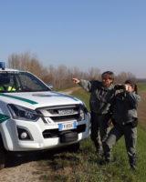 Succede tra Finale Emilia e S.Felice sul Panaro, cacciatore fugge a un controllo, inseguito e multato