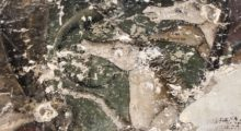 Cantieri Aperti a Carpi per le Giornate Europee del Patrimonio
