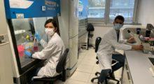 Cura della psoriasi, premio a una ricercatrice del Laboratorio di Dermatologia del Policlinico